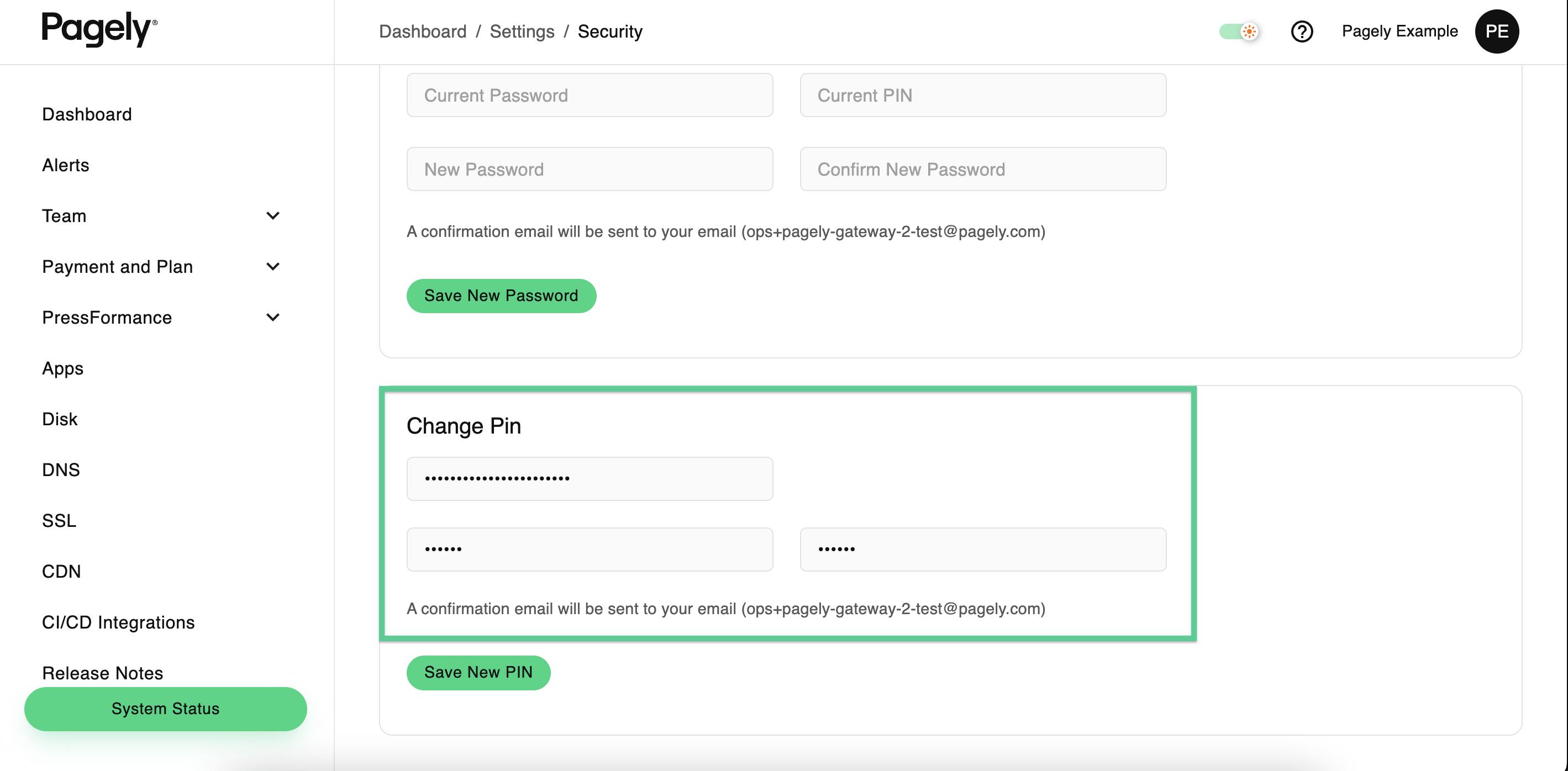 Screenshot: change pin fields filled